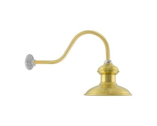 The Chestnut Brass Gooseneck Light -
