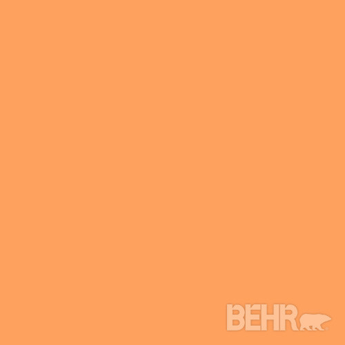 Behr paint color orange spice 250b 5 modern paint Orange paint samples