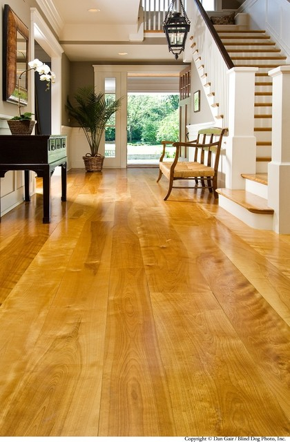 Yellow Birch modern-hardwood-flooring