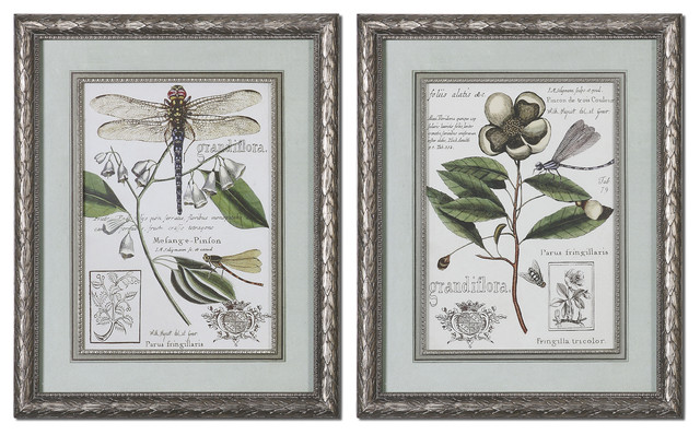 Grandiflora Framed Art Set of 2 traditional-artwork