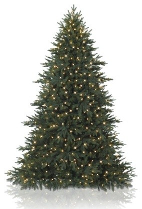 Balsam Hill Colorado Mountain Spruce™ Artificial Christmas Tree traditional-christmas-trees