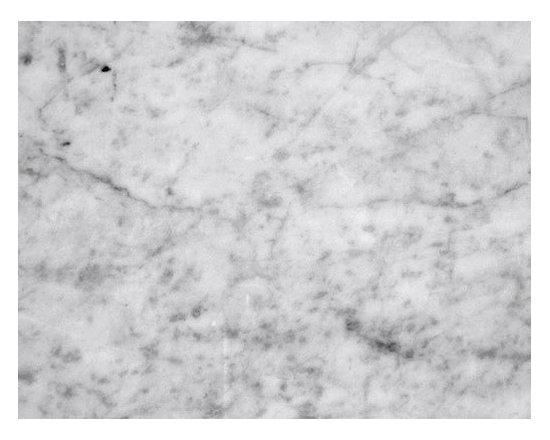 Carrara Select Honed -