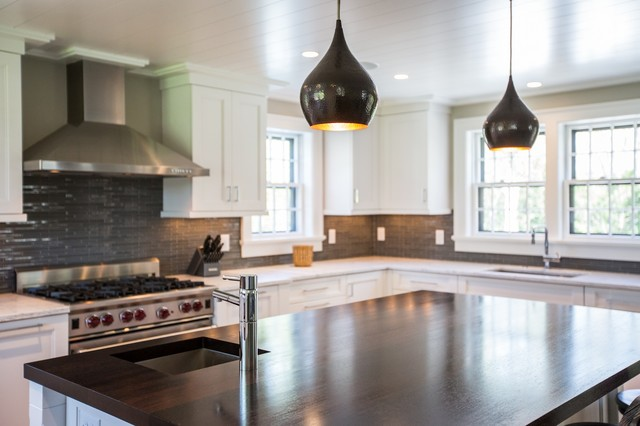 Complete Renovation transitional-kitchen