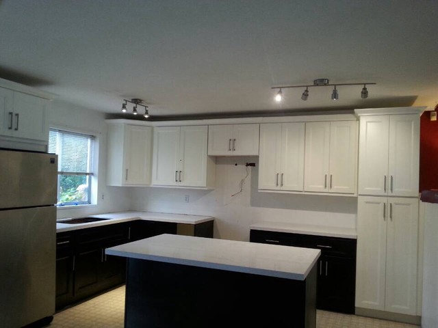 Langley contemporary-kitchen-cabinets