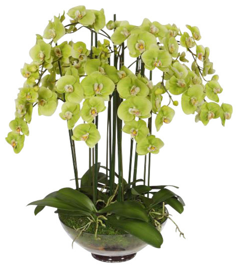 Phalaenopsis Orchid In Glass Flower Arrangement traditional-artificial-flowers