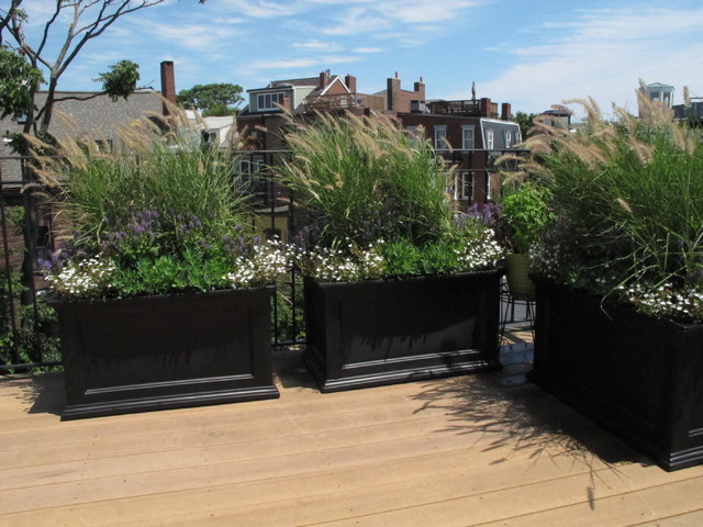 Charlestown Roof Deck Traditional Landscape Boston