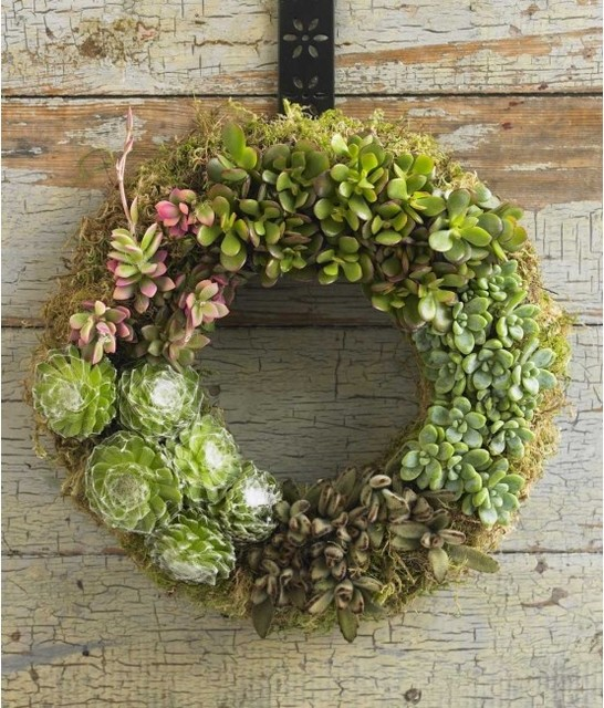 Contemporary Wreaths And Garlands by VivaTerra