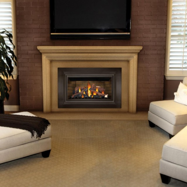 Napoleon basic direct vent gas fireplace insert multicolor for Contemporary fireplace insert