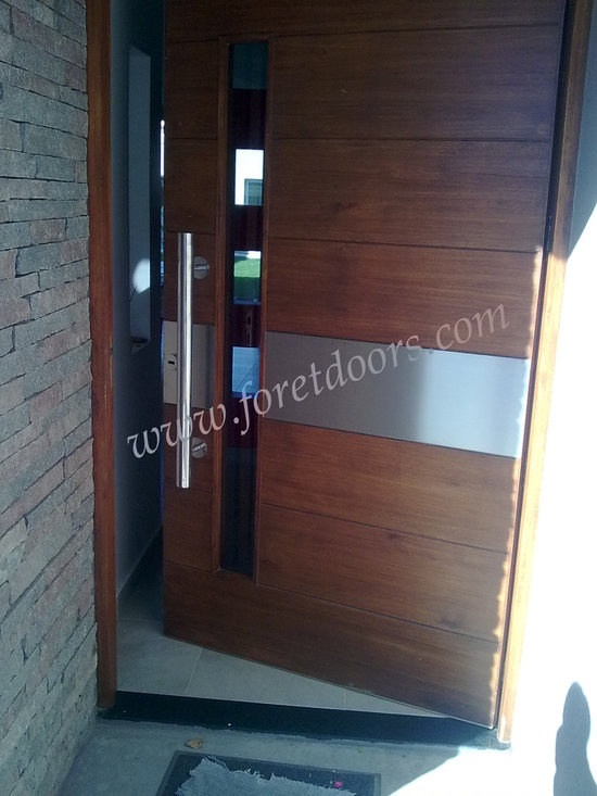 Modern front entry doors / contemporary front entry doors - Solid wood modern entry door with stainless steel stripe, glass and stainless steel pull
