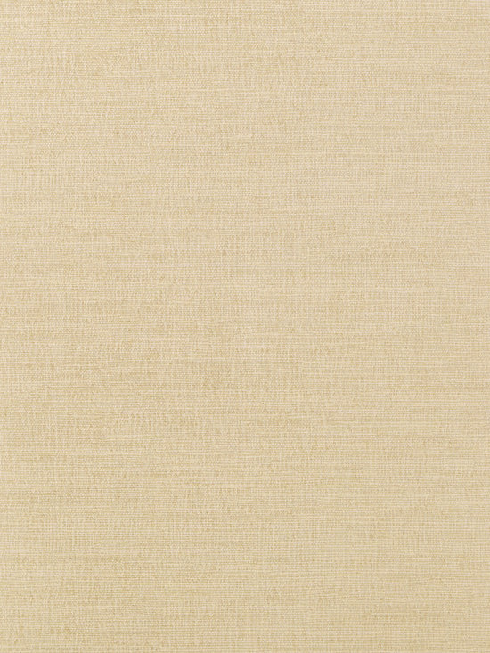 Texture Resource Volume 4 - Flat Shots - Coastal Sisal wallpaper in Wheat (T14111) from Thibaut's Texture Resource Volume 4 Collection