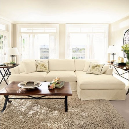 This is the white version of the Arhaus slip covered sofa we ordered in sunbrell