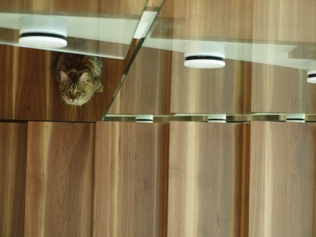 Glass balustrade in detail contemporary