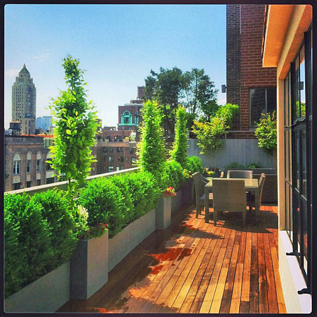Nyc rooftop terrace roof garden deck outdoor dining for Terrace plants