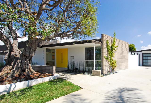 Mid Century Modern - Revitalized modern-exterior
