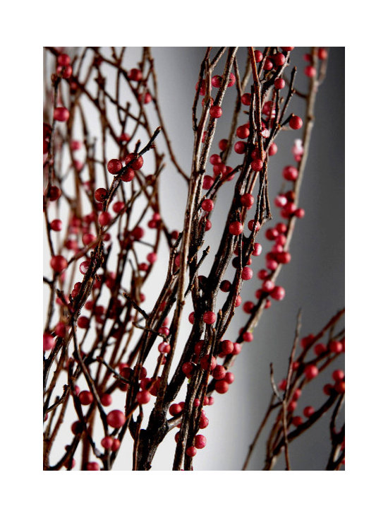 Sweet Huck Natural Huckleberry Branches, Red Berries -