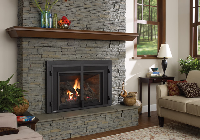 Regency Liberty L540E gas fireplace insert traditional-fireplaces