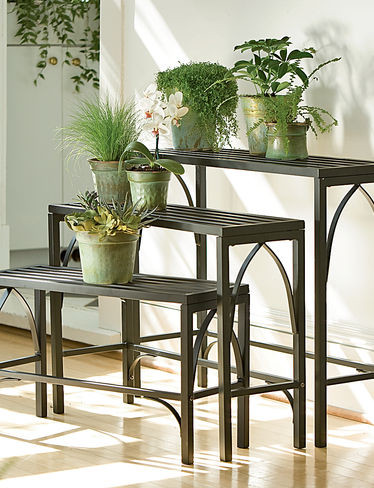 Plant Stand Trio Contemporary Plant Stands And