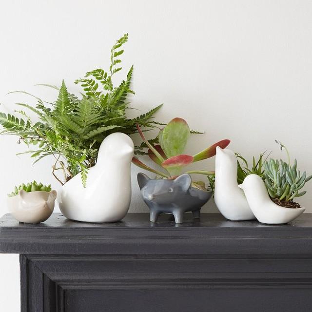 ceramic animal planters contemporary indoor pots and. Black Bedroom Furniture Sets. Home Design Ideas