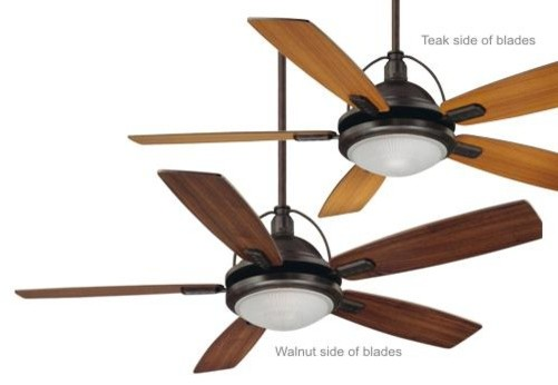 Savoy House Shasta Ceiling Fan in English Bronze transitional-ceiling-fans