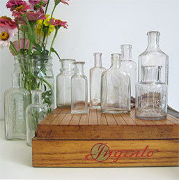 Collection of Small Antique Bottles traditional-vases