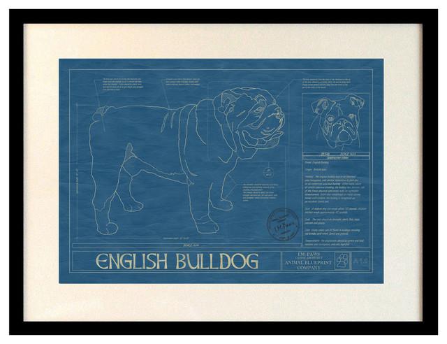 Animal Blueprint Art, English Bulldog - Contemporary - Artwork - by Animal Blueprint Company Inc.