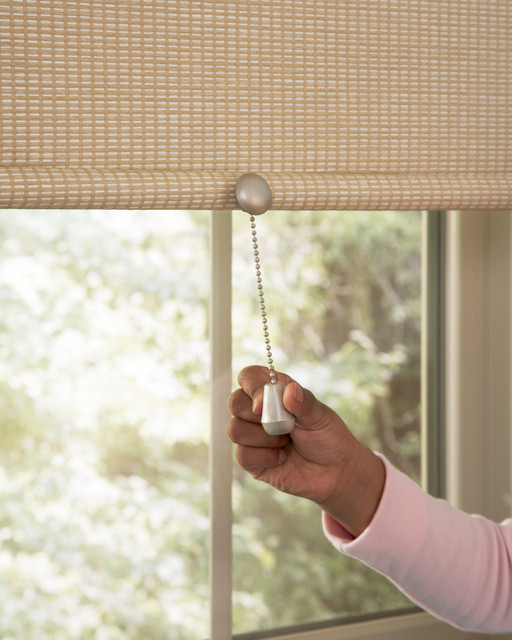 Hunter Douglas Designer Roller Shade Pull contemporary