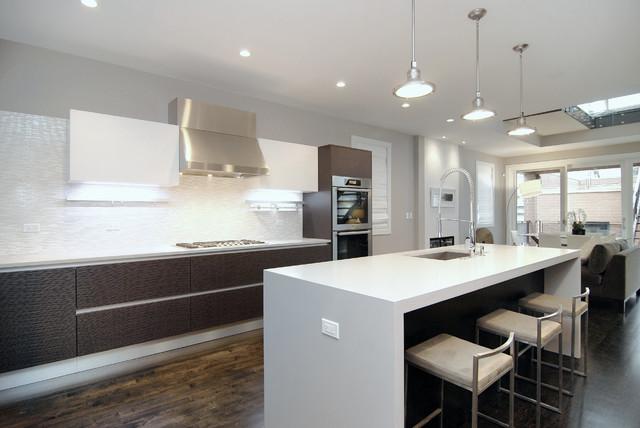 chicago winchester street modern kitchen cabinets