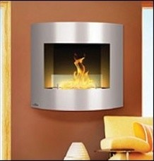 Napoleon Brushed Stainless Steel Bio Ethanol Wall Fireplace fireplaces