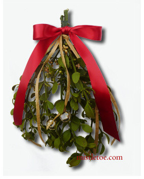 Traditional Holiday Decorations by mistletoe.com