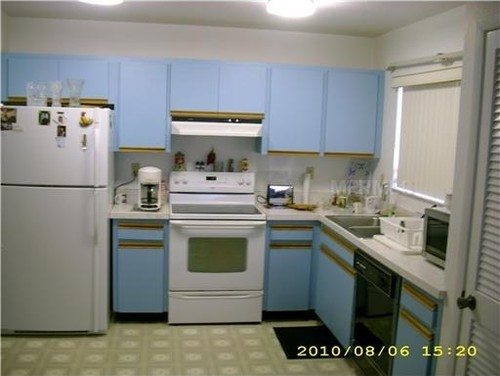 Http Www Houzz Com Discussions 565742 How Did I Do A Kitchen Redo For 350 But