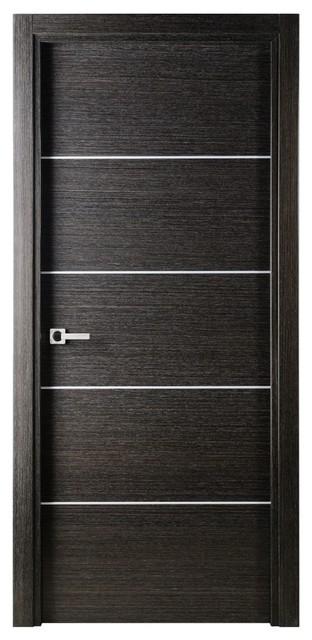 Avanti Contemporary Interior Door Black Apricot Finish - Modern - Interior Doors - new york - by ...