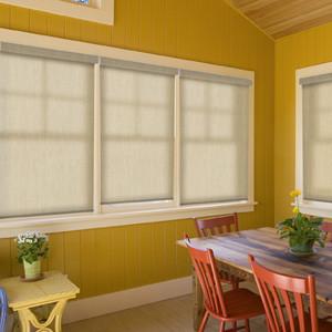 Blindsgalore Expressions Solar Shades: Subtle Textures contemporary-window-treatments