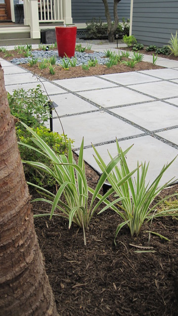 Modern with citrus and ornamental grasses modern for Modern ornamental grasses