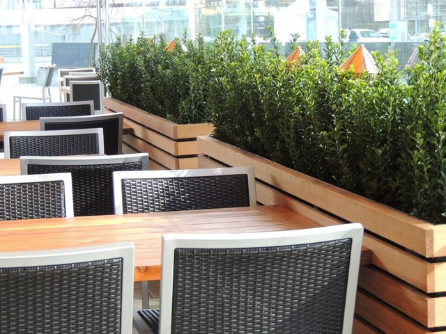 New Restaurant Project Modern Outdoor Pots And