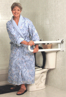 "P.T. Rail™ Fixed, 32""/81cm, Left, Bright Polish Chrome Grab Bar contemporary-toilet-accessories"