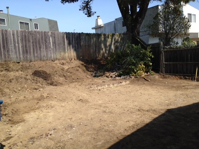 Backyard in Daly City, CA traditional
