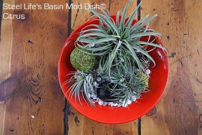 Steel Life's Basin Mod Dish - Tangerine modern-indoor-pots-and-planters