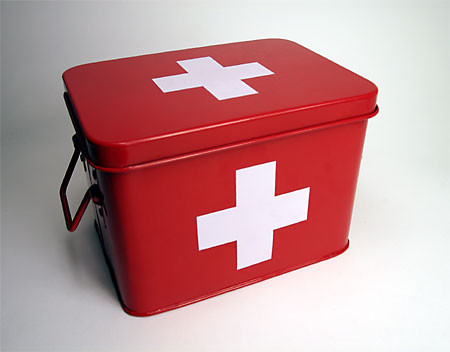 Swiss Medicine Box - Storage Bins And Boxes - by Blue Ribbon General Store