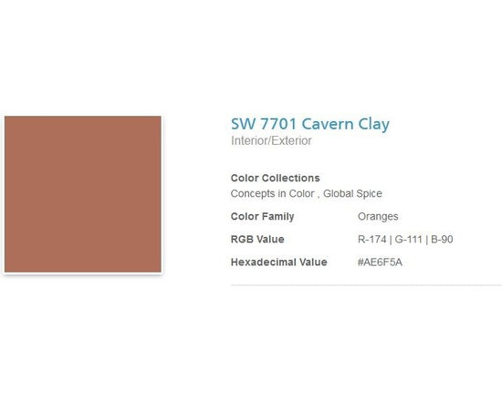 Jerilyn's Successful Paint Colors - A cinnamon spice color used as an accent wall or two. I've used it in rustic kitchens and living rooms. By Sherwin Williams.