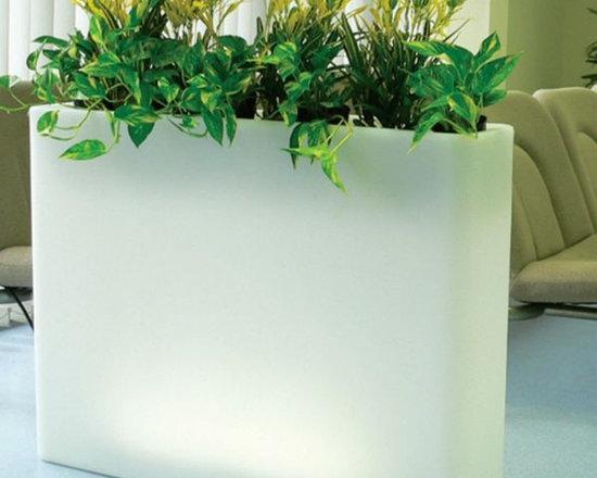 Illuminated Indoor-Outdoor Planters - Illuminated indoor-outdoor planter.