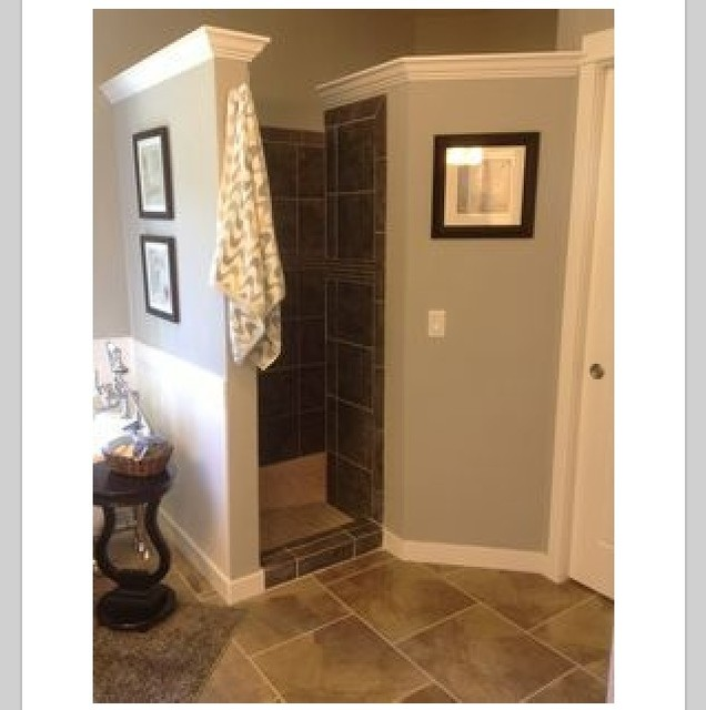 Walk in shower no door for Master bathroom no door