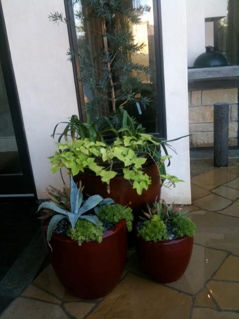 Succulent Planters mediterranean-landscape