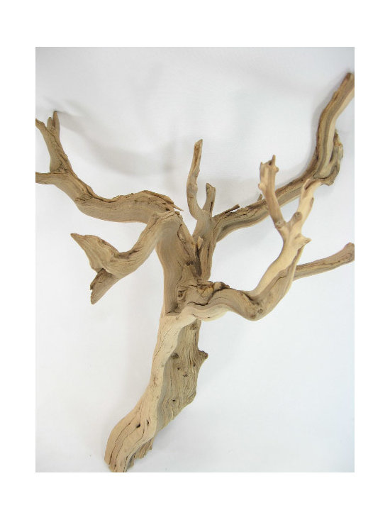 Natural Ghostwood Branch -