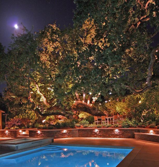Palo Alto, 2012 contemporary-pool