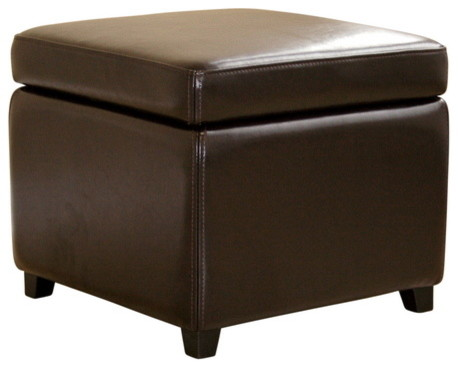 Baxton Studio Dark Brown Full Leather Small Storage Cube
