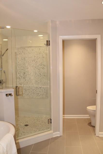 Bathroom Renovation/Island Neighborhood transitional