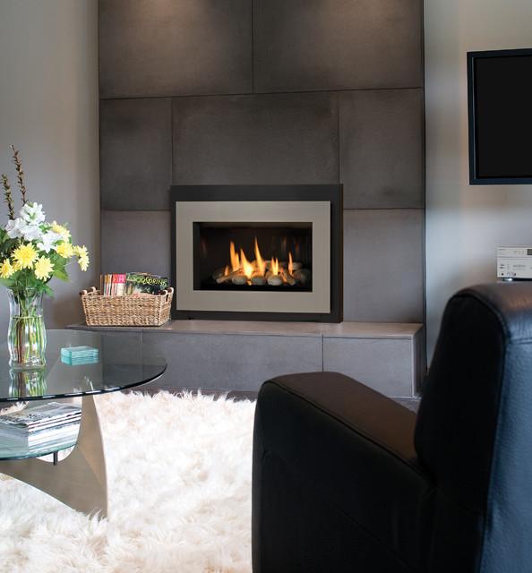 Legend G3 Insert Series Fireplace contemporary