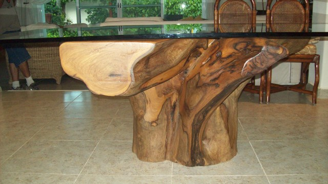 Tree Root Table Base Arctic Edged Glass Tops With Tree Root Table.