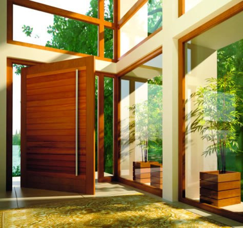 Pivot Doors Contemporary Front Orange County