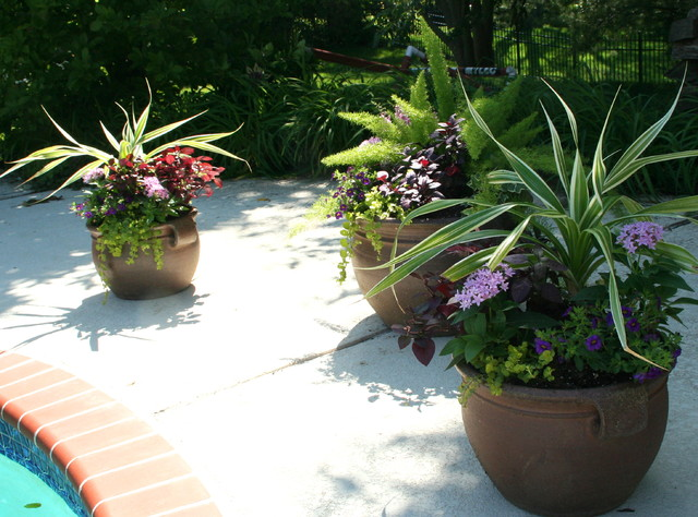Stern Pool Deck  outdoor planters